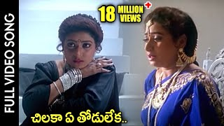 Chilaka Ye Thodu Leka Video Song | Subhalagnam