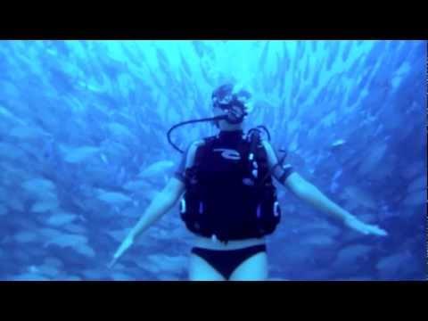 Scuba Diving in Cabo Pulmo