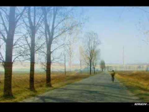 VIDEOCLIP Traseu MTB Bucuresti - Parcul Natural Comana