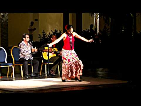 Flamenco Dance HD