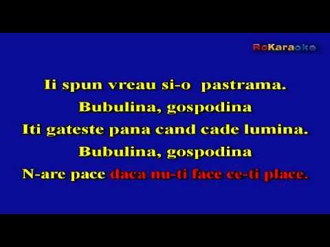 STEFAN BANICA -Bubulina  KARAOKE profesional