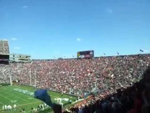 Spirit the eagle flies into window at auburn game!
