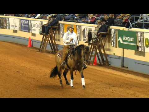 National Reining Horse Association Hosts Fundraising Event for Memorial