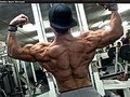 Shredded Aesthetics Back Workout