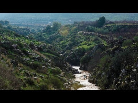 Stock Footage of a river flowing through a green and rocky gorge in Israel.