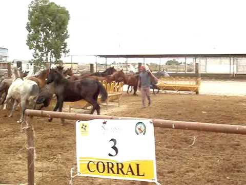 Corral 03