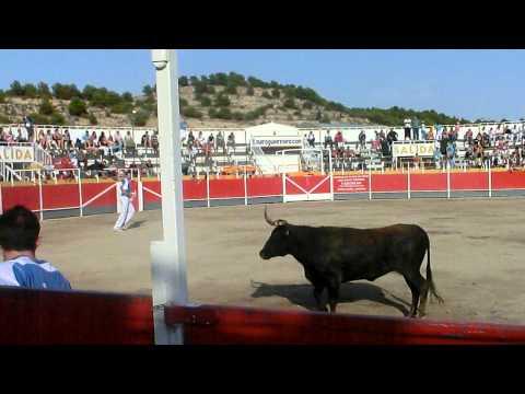 Concurso de recortadores Borja (Zaragoza) 17/09/2011- Mariano Ruiz y Miguel Segura. (1ª Ronda)