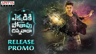 Ekkadiki Pothavu Chinnavada Movie Release Promo