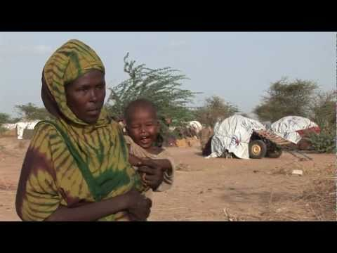 UNICEF responds to Horn of Africa food crisis that has left 2 million children malnourished