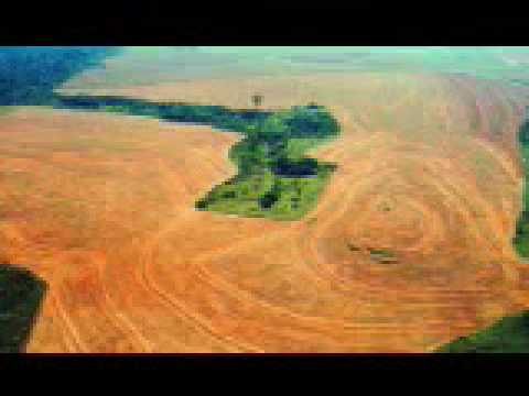 Educatec Sustentablemente-Como afecta el cambio climático al Amazonas.avi