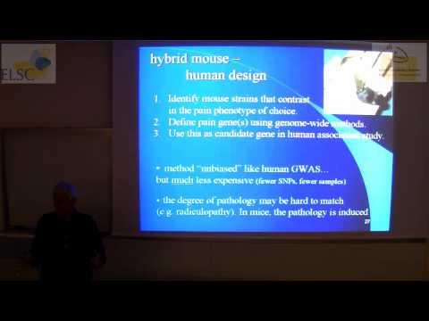 ELSC-ICNC Seminar - Marshall Devor