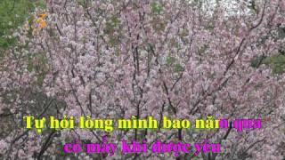 Nước mắt đêm mưa - karaoke