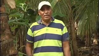 Programa El Mundo al Campo- Asohofrucol. Coco