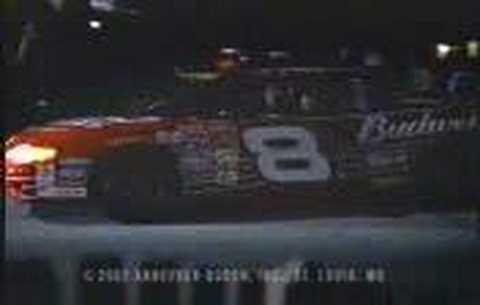Dale Earnhardt Designated Driver