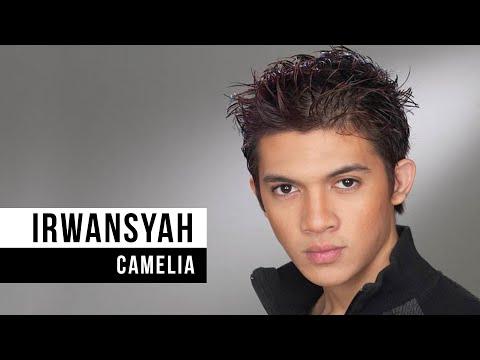 ... , Lirik Lagu, Profil & Bio | Halaman Utama Irwansyah - WowKeren.com