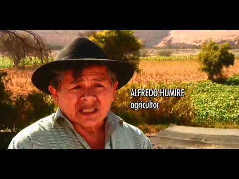 Lluta en Peligro Proyecto minero Los Pumas y la destrucción del huerto del norte grande.