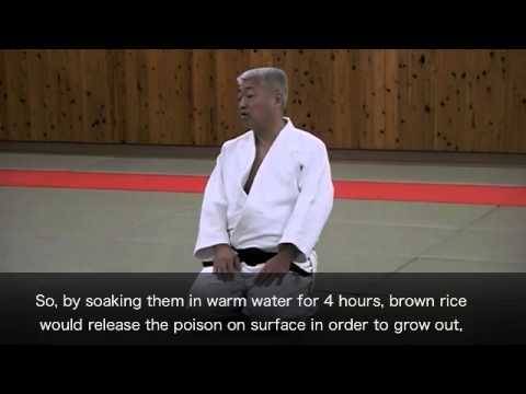The secret of Aikido's Atemi (English)