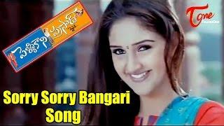 Sorry Sorry Bangari - Pellikani Prasad