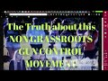 Фрагмент с начала видео The Truth about this Non-Grassroots Gun Control Movement