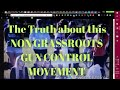 The Truth about this Non-Grassroots Gun Control Movement