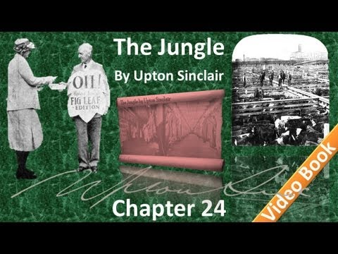 Chapter 24 - The Jungle by Upton Sinclair