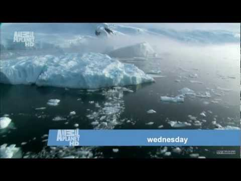 Animal Planet HD - Planet Earth Advert 1080p 2012 March