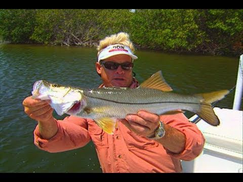 Space Coast Canals - REDFISH, SNOOK & TARPON in