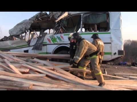 Семь человек погибли в ДТП в Навашинском районе