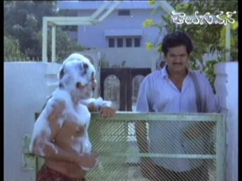 Mallikarjuna Rao Shampoo Comedy