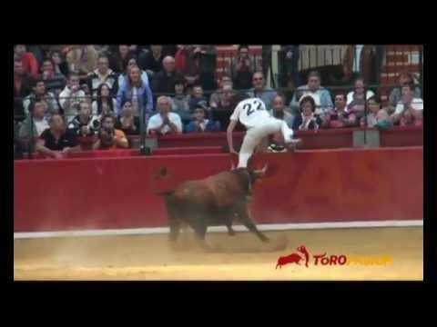 Toropasión - XXIX Concurso Nacional de recortadores con anillas en Zaragoza