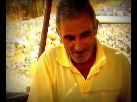 Reportagem TVI no Alqueidão