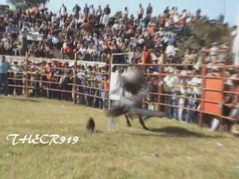 El Muchacho Alegre De Jal.:La Monta De Su Muerte