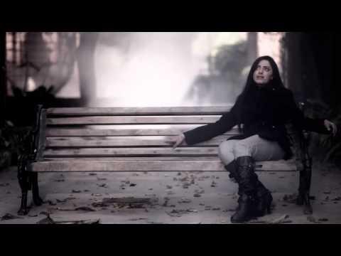 Soneyaa - (Punjabi Version) - Hamza Malik Ft Aleena Khan [ Emtiness Cover 2013 ] Official Video.HD