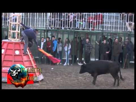 2014 01 19 BENICASIM LA ESPUELA TARDE DE VAQUILLAS