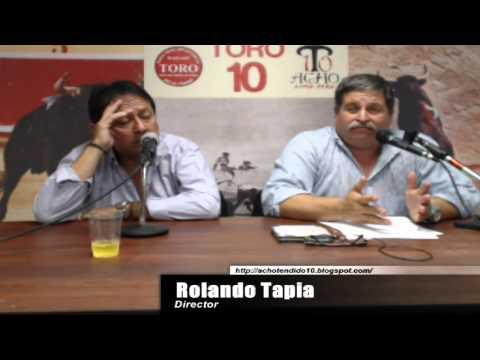TORO TENDIDO 10 (02.02.15)