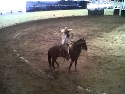 Bigotona a caballo Víctor Flores Tamariz A