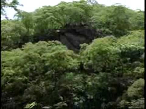 1/3 Reserva Ecológica Sierra de Huautla (CEAMISH)