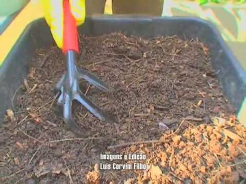 BIOSFERA - Como montar sua Composteira