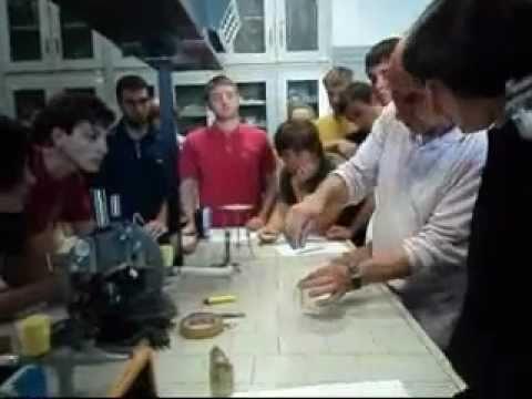 Esperimento di Chimica part.2°