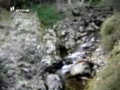Arouca - Mini-Hídricas - Rio Paiva e Paivó