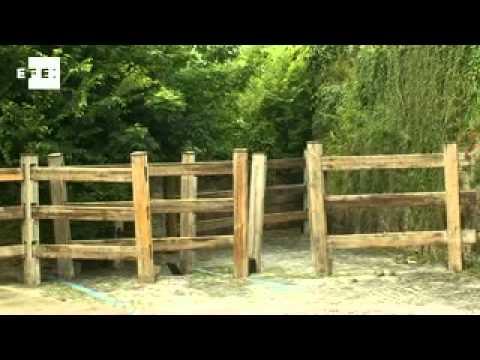 Comienza a instalarse el vallado para los encierros de las fiestas de San Fermín