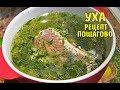 УХА Домашний рецепт вкуснейшей ухи Рецепт пошагово Fish soup