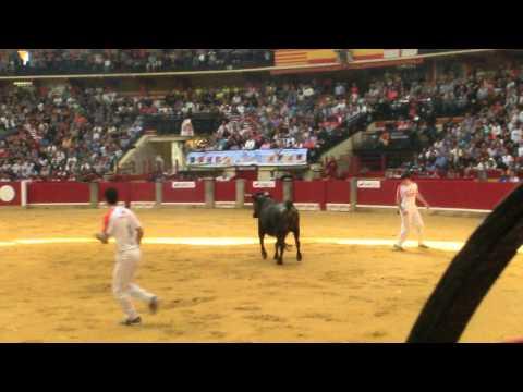 Concurso de recortadores Zaragoza 07/10/2012- David Morella y Asier Estarriaga.