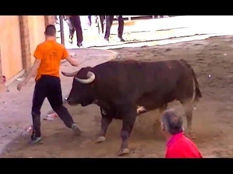 Los recortadores disfrutaron museros els valents 2014 Tres cerriles a la calle mas.