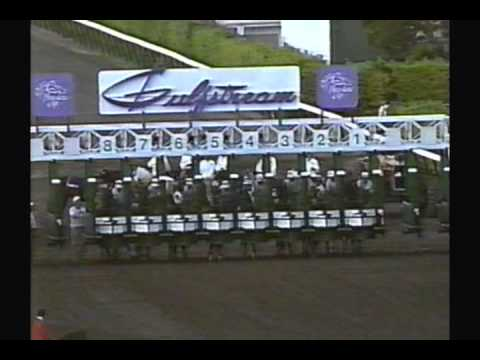 1989 Breeders' Cup Classic - Sunday Silence + Pre &amp; Post Race