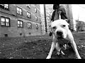 (FREE USE)Hard Aggressive Underground Hardcore Sick Rap HipHop Beat Instrumental