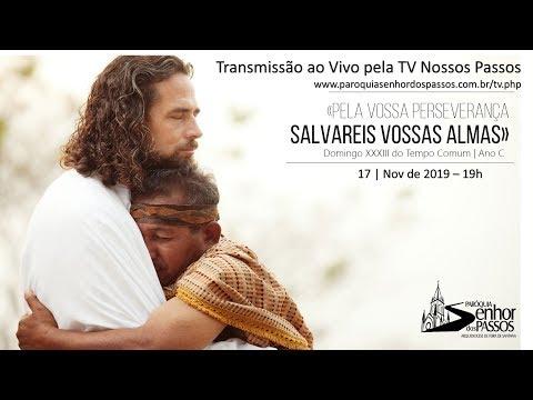 Missa do 33º Domingo do Tempo Comum - 17/11/2019 - 19h00
