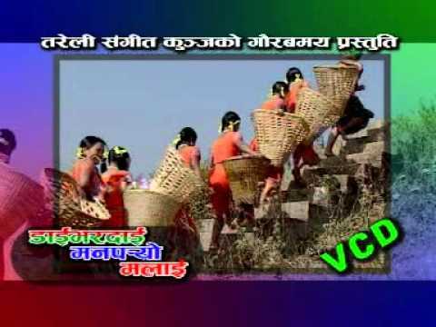Nepali Teej 2012 1