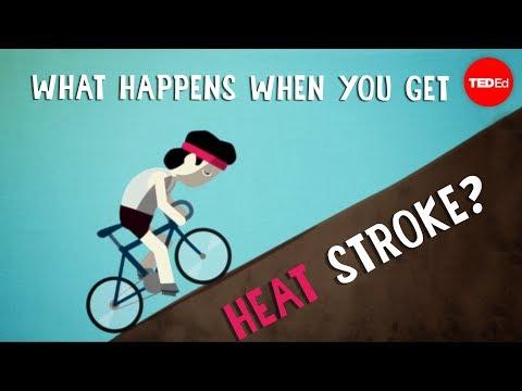 Watch: What happens when you get heat stroke? - Douglas J. Casa