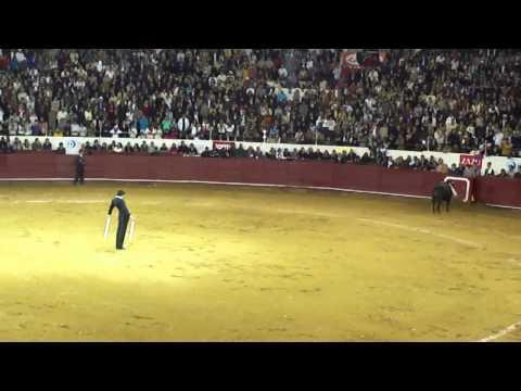 Banderillas Fandi, Campuzano y Castella